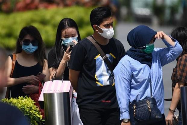 新冠肺炎疫情:新加坡新增病例和重症病例继续增加 hinh anh 1
