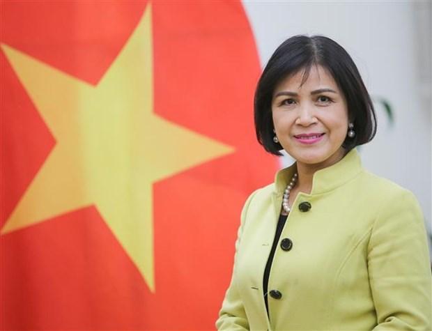 越南主持东盟协调委员会有关世贸组织事务的会议 hinh anh 2