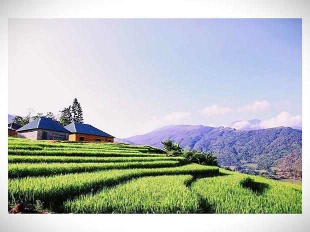 老街省哈尼族青年回归家乡投身于旅游创业 hinh anh 2