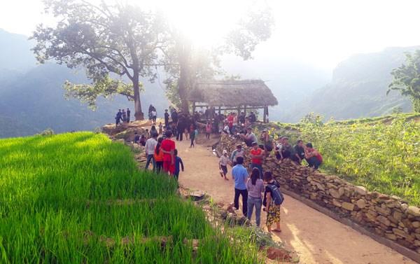 老街省哈尼族青年回归家乡投身于旅游创业 hinh anh 1