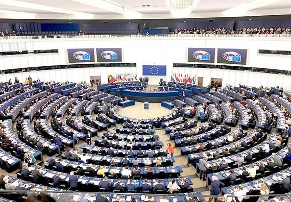 欧洲议会批准EVFTA和EVIPA——为越欧关系注入动力的重要决定 hinh anh 1