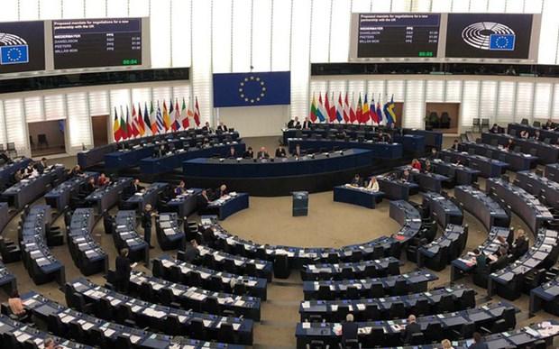 ILO对欧洲议会通过EVFTA表示欢迎 hinh anh 1