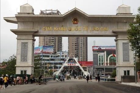 新冠肺炎疫情:通过老街口岸向中国出口的商品继续呈现大幅增长趋势 hinh anh 1