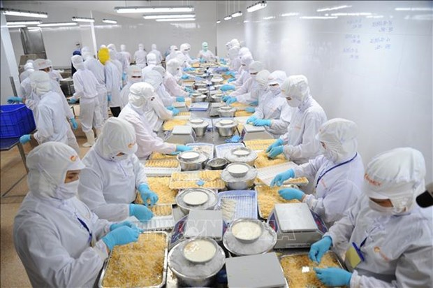 新冠肺炎疫情:越南渔业部门出台多项应对措施 hinh anh 1