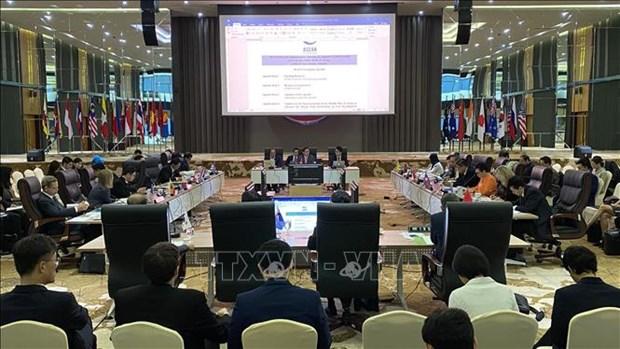 越南主持东亚峰会大使级会议机制2020年第一次会议 hinh anh 2