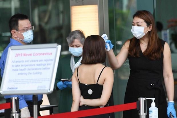 新冠肺炎疫情可能将使新加坡经济陷入衰退 hinh anh 1