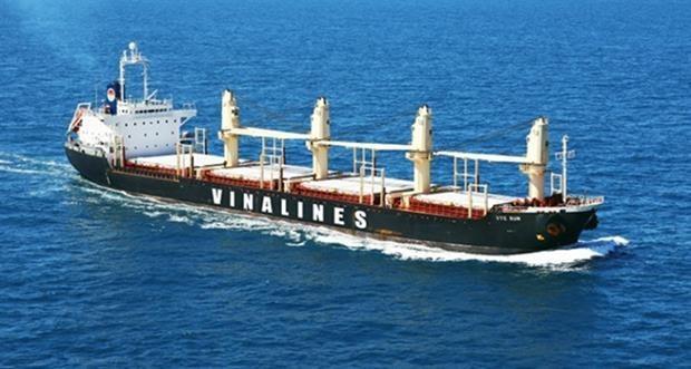 越南航海总公司将加入国际航运企业联盟 hinh anh 1