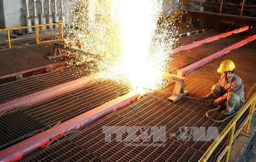 和发集团力争实现2020年建筑钢材出口量达40万吨的目标 hinh anh 1