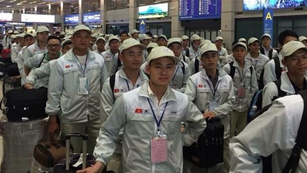 日本施行新签证政策后 获得签证的越南劳动者占比过半 hinh anh 1