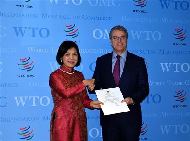 越南承诺同世贸组织保持密切配合 hinh anh 1