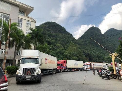 新冠肺炎疫情:目前仍有大量农产品在越南北部口岸等待通关 hinh anh 1