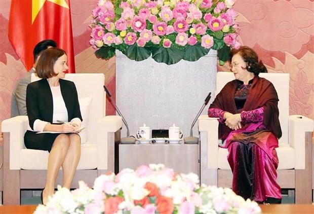 越南国会主席阮氏金银会见澳大利亚驻越南大使罗宾•穆迪 hinh anh 2