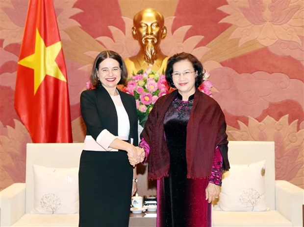 越南国会主席阮氏金银会见澳大利亚驻越南大使罗宾•穆迪 hinh anh 1