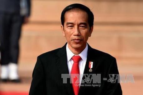 印尼总统强调投资是促进经济增长的关键所在 hinh anh 1