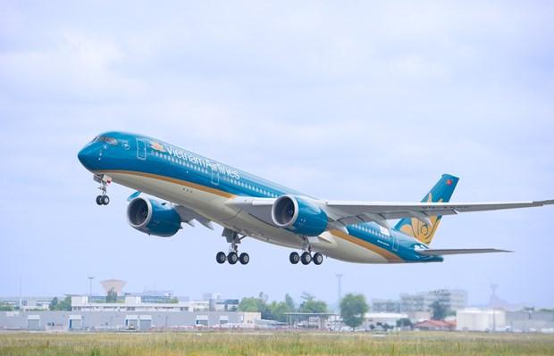 """越南航空局建议对""""禁止飞往韩国和日本航班""""虚假信息案进行调查 hinh anh 1"""