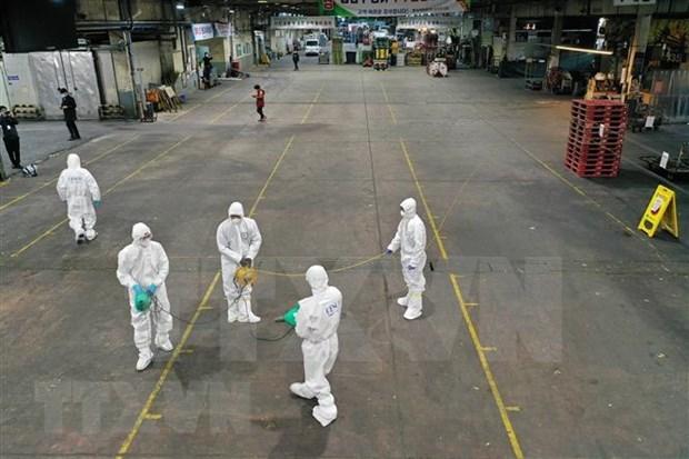 越南外交部提醒公民注意韩国新冠肺炎疫情 hinh anh 1