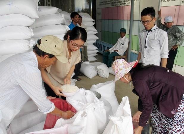 越南政府向莱州、奠边和德农三省下拨救济大米 hinh anh 1