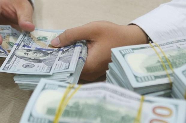 2月24日越盾对美元汇率中间价上调4越盾 hinh anh 1