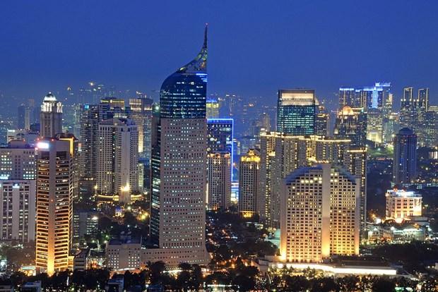 印尼对2020年经济增长目标持乐观态度 hinh anh 1