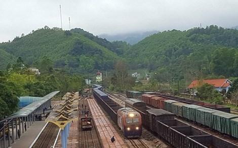 越南通过同登国际火车站向中国出口460吨农产品 hinh anh 1