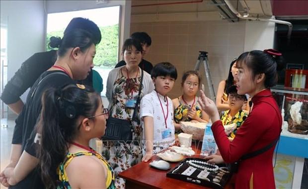 坚江省开展配套的新冠肺炎疫情防控措施 让游客放心前来参观游览 hinh anh 1