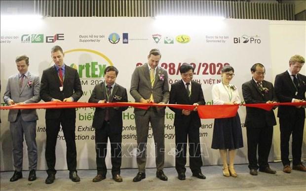越南果蔬及花卉生产效率和产量年均增长5% hinh anh 1