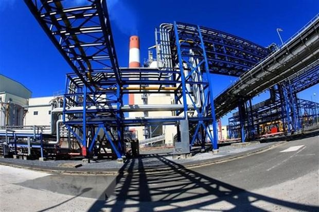 日本希望为芹苴市乌门一号热电厂提供燃料 hinh anh 1