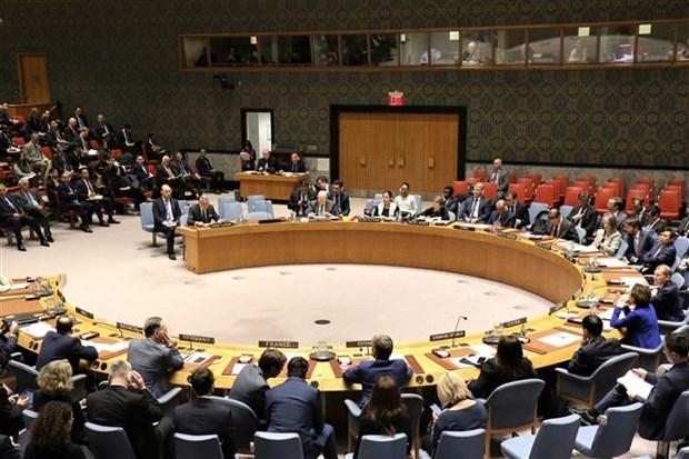 越南与联合国安理会:越南坚定支持《不扩散核武器条约》的宗旨和目标 hinh anh 1