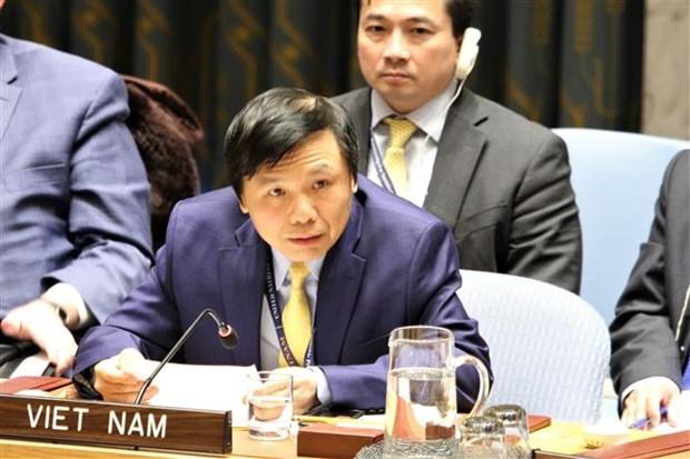 越南与联合国安理会:越南坚定支持《不扩散核武器条约》的宗旨和目标 hinh anh 2