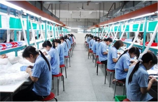 越南劳动者对就业机会充满信心 hinh anh 1