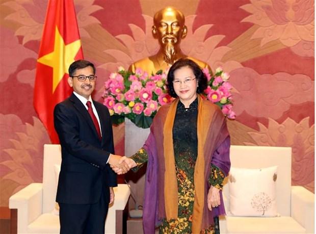 越南国会主席阮氏金银会见印度驻越大使 hinh anh 1