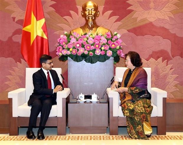 越南国会主席阮氏金银会见印度驻越大使 hinh anh 2