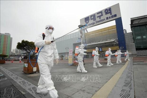 新冠肺炎疫情: 越南驻韩国大使馆建议所在国为越南公民展开积极的治疗创造便利条件 hinh anh 1
