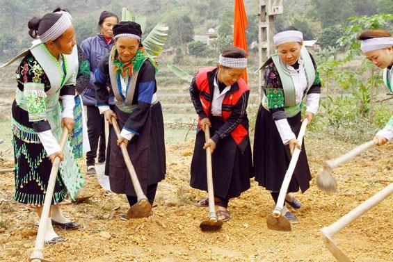展开落实2021-2030年少数民族地区与山区经济社会发展总体提案 hinh anh 1