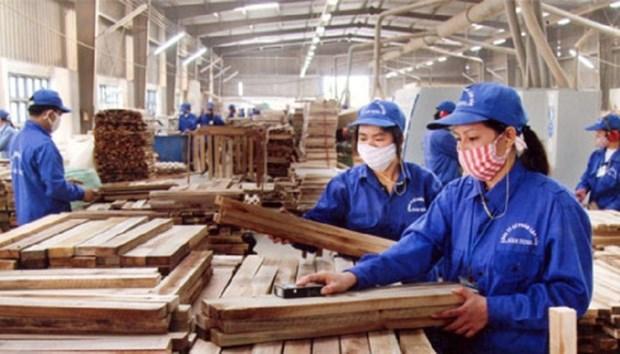 越南全国共有7500家农林水产品加工厂 hinh anh 1
