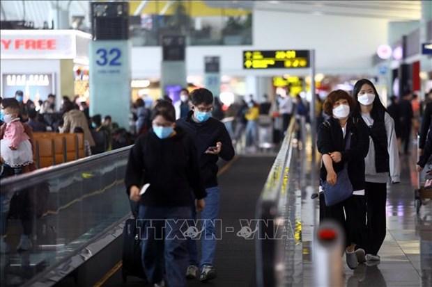 新冠肺炎疫情:新山一机场和内排机场暂不接收来自韩国的航班降落 hinh anh 1