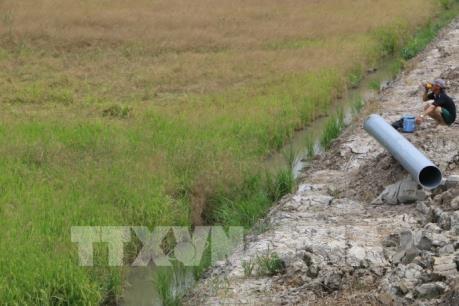 欧洲联盟向越南受灾群众提供6万欧元援助 hinh anh 1