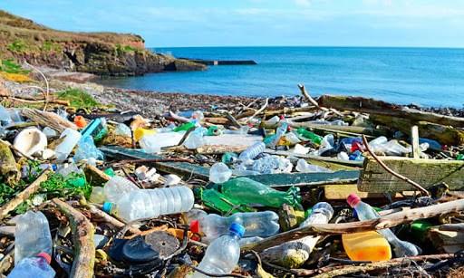 庆和省力争到2025年把海洋塑料垃圾排放量降至一半 hinh anh 1