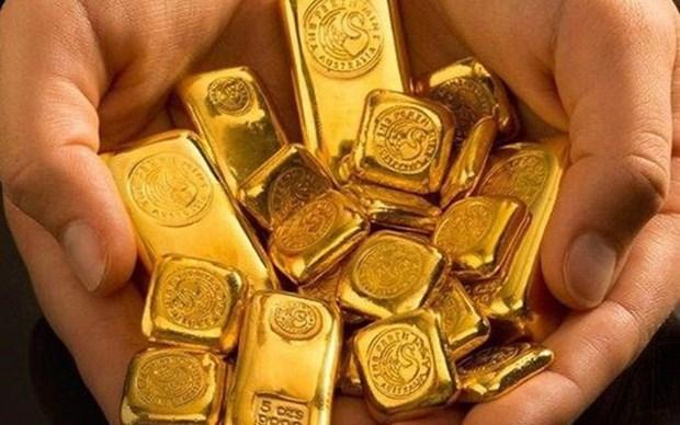 美联储降息 越南国内黄金价格猛增 hinh anh 1
