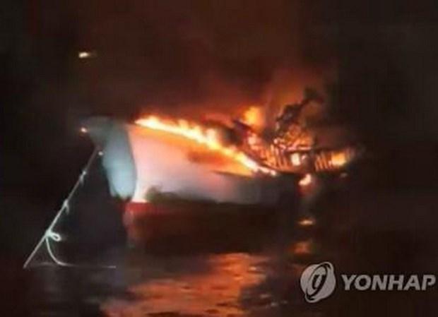 韩国济州岛附近海域一渔船起火致5名越南公民失踪:越南驻韩国大使馆采取必要措施保护公民 hinh anh 1