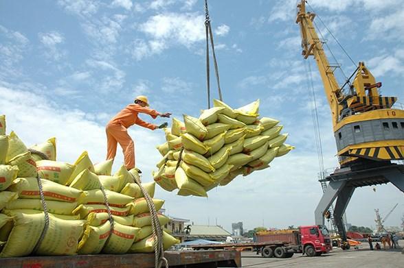 越南大米出口价格猛增 hinh anh 1