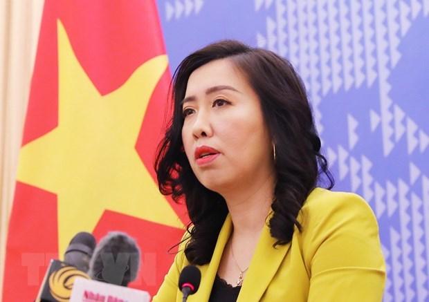越南将随时采取必要措施保护公民 hinh anh 1