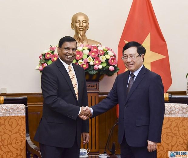 政府副总理兼外长范平明会见斯里兰卡新任驻越大使 hinh anh 1
