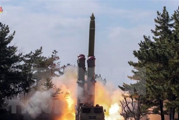 越南支持全面彻底消除大规模毁灭性武器的一切努力 hinh anh 1