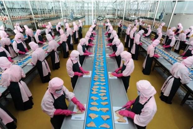 越南正式获批向俄市场出口鸡肉加工品 hinh anh 1