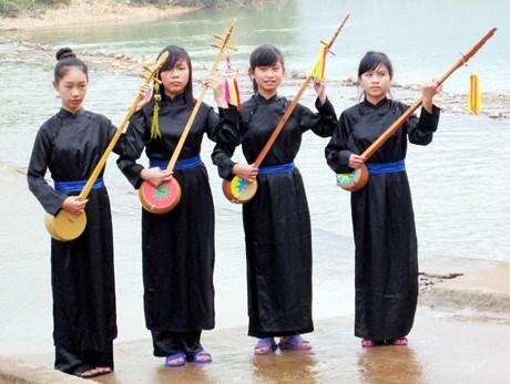 越南广宁省岱依族同胞的传统乐器——丁琴 hinh anh 1