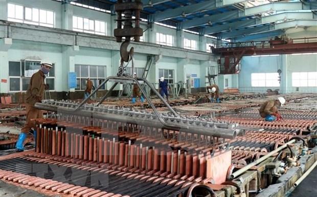 越南国有煤矿和工业集团将于第三季度将老街冶铜项目投入运作 hinh anh 1