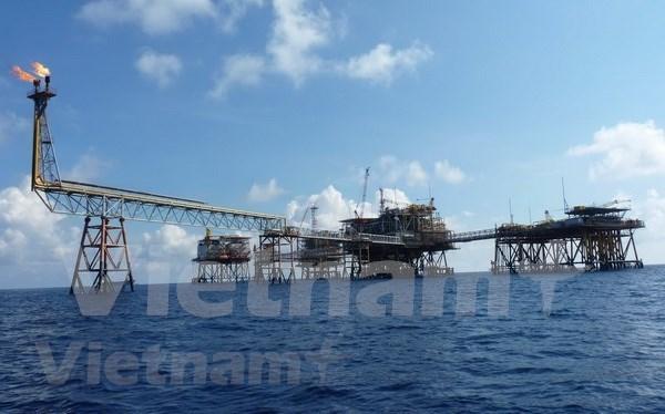 年初越南石油开采量超出年度计划的11.5% hinh anh 1