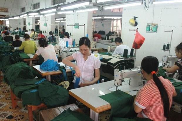2020年河内市将为1.31万名农村劳动力进行初级职业培训 hinh anh 1