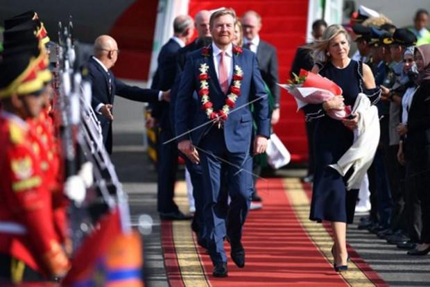印度尼西亚与荷兰致力建设相互尊重和平等互利的关系 hinh anh 1